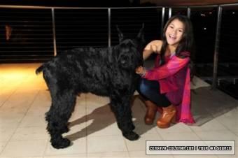 porque zendaya tiene una mascota y la quiere mucho