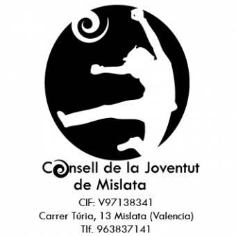 Logo Consell 1