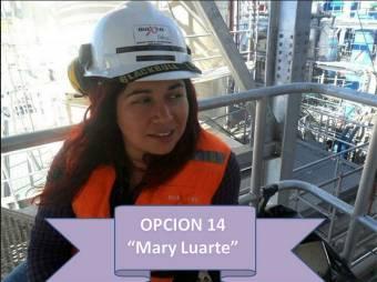 Mary Luarte