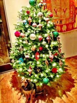 miley cyrus arbol de navidad.